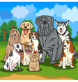 purebred dogs cartoon vector image vector image