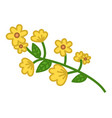 yellow flower green branch with small flowers and vector image