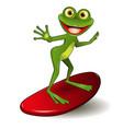 frog surfer vector image