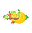 Fruit plate vector image vector image