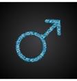 Gender Men Blue Sequins Icon vector image vector image