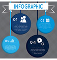 Infographic Circular design on the grey background vector image vector image