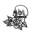 rose tattoo with skull roses isolated vector image vector image