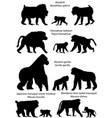 silhouettes of monkeys vector image vector image