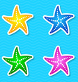 Starfish labels vector image vector image