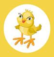 cute chicken funny cartoon vector image
