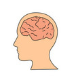 brain or mind side view inside head line art vector image
