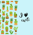 Cacti in plant pots with