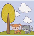 cute monkey and cat animals in landscape vector image vector image