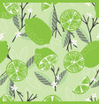 fruit seamless pattern lime with branches leaves vector image vector image