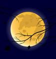 full moon 2 vector image