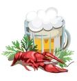 mug beer with boiled crawfish vector image