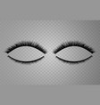 realistic collection of false lashes vector image vector image