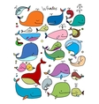 Whales collection sketch for your design vector image vector image