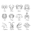 Zodiac graphic signs vector image vector image