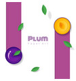 fresh plum fruit background in paper art style vector image