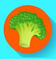 fresh broccoli icon realistic of vector image vector image