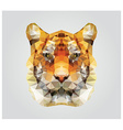 Geometric polygon tiger head triangle pattern vector image vector image
