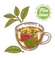 hand drawn cup tea white knitted tea isolated vector image vector image