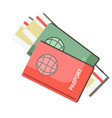 international passports with tickets isolated on vector image