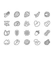 set nuts seeds and vegetables line icons pack vector image