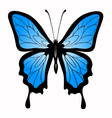 abstract big blue butterfl vector image vector image