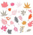 autumn leaves isolated icon set vector image vector image