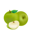 fruit icon green apple white background ima vector image