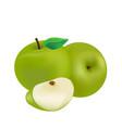 fruit icon green apple white background ima vector image