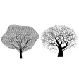 two trees vector image vector image