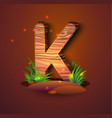 wooden letter k decorated with grass vector image vector image