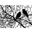 silhouettes of birds at branch tree vector image