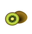 fruit icon kiwi white background image vector image
