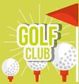 golf club three ball on tee red flag vector image vector image