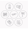 Palm tree air-plane and e-key icons vector image vector image
