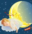 sleeping cupid vector image