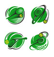 tennis sport club ball and racket icons vector image vector image