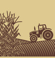 agricultural work in corn field vector image