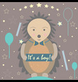 baby boy birth announcement vector image