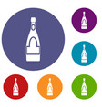 champagne bottle icons set vector image vector image