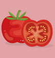 fresh tomato healthy food vector image