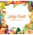 Fruit abstract background vector image vector image
