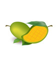 fruit icon mango white background image vector image vector image