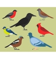 Set of flat birds isolated on background vector image vector image