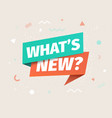 whats new isolated icon advertising speech vector image