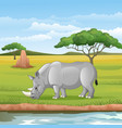 cartoon african rhinoceros in savannah vector image vector image