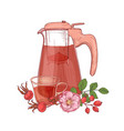 elegant drawing of glass transparent pitcher with vector image vector image