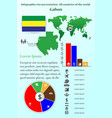 gabon infographics for presentation all vector image