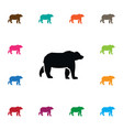 isolated grizzly icon wild element can be vector image vector image