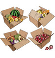 set cardboard box with various fruits vector image
